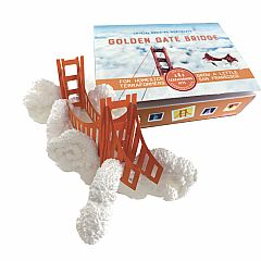 Crystal Growing Golden Gate Bridge